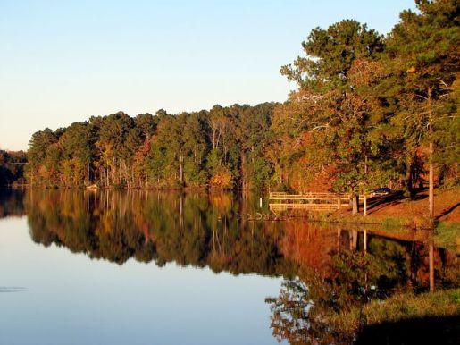 lake-65443__480